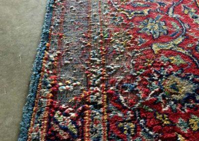 Motten im Teppich
