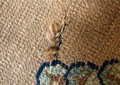 Löcher im Teppich reparieren